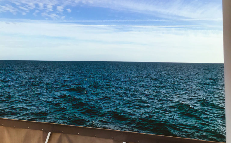 Fair Winds and Following Seas: How the weather affects VaquitaCPR efforts